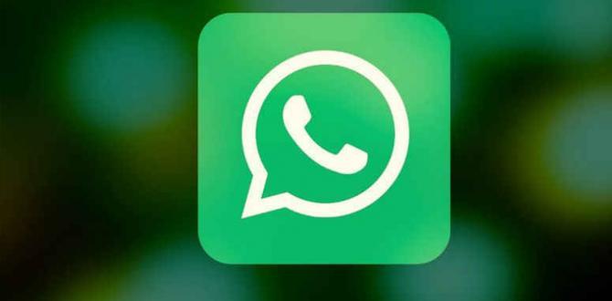 WhatsApp'a gönderilen mesajı geri alma özelliği geliyor!