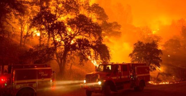 Güney Lefkoşa'da Yangın!