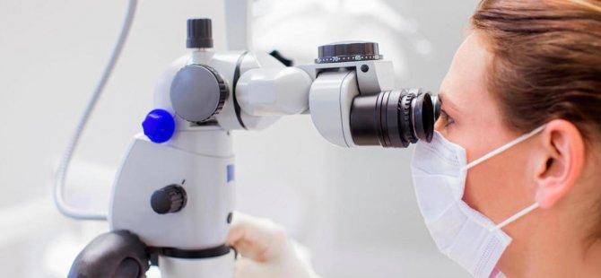 İnsan vücudunda yeni bir 'mikro organ' bulundu