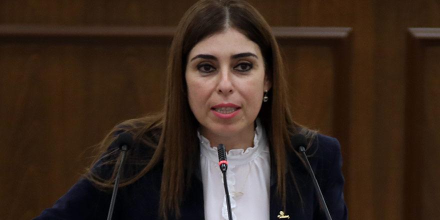 İzlem Gürçağ Dilekçe ve Ombudsman Komitesi Başkanı Seçildi