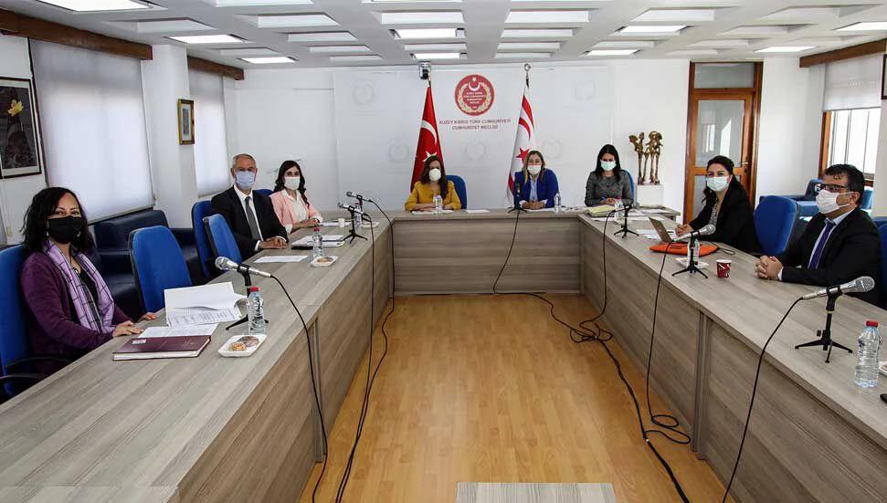 Meclis Hukuk Komitesi YYK Üyeliği Başvurularını Değerlendirdi Ve İki Tasarıyı Görüştü