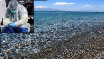 Kıyıya Vuran Coronavirüslü Ceset Yüzünden Tüm Ülke Karantinaya Alındı