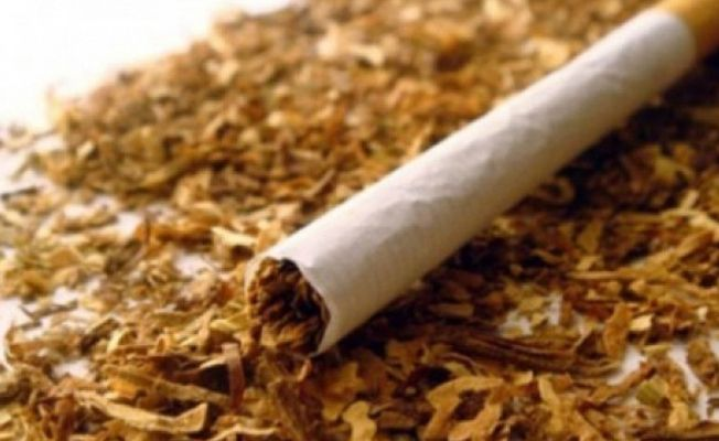 Güney'de kilolarca uyuşturucu, tütün ürünü ve akaryakıta el konuldu