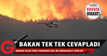 Tarım ve Orman Bakanlığı'ndan orman yangınlarıyla ilgili açıklama